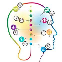 Les 8 profils d'intelligence
